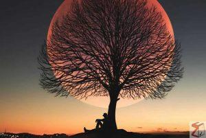 GALLERY: Tentang bulan yang memesona