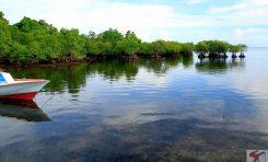 Kuskus, tarsius, raja udang, buaya, cap tikus semua ada di Mantehage, pulau terluar dekat Manado