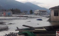 Kampung Lere hadapi banjir rob dan ancaman buaya