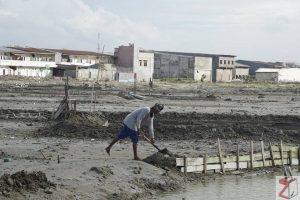 Pemulihan pascabencana Sulteng butuh waktu 3 tahun