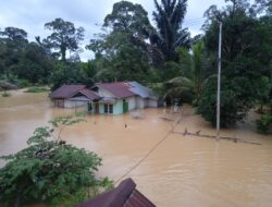 6.165 KK terdampak banjir di Kapuas Hulu